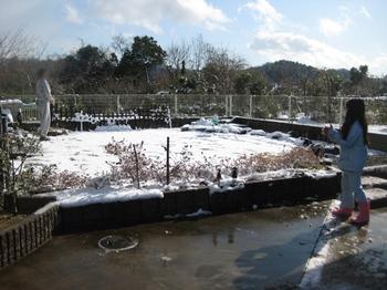 2009 12 19 雪 2.jpeg