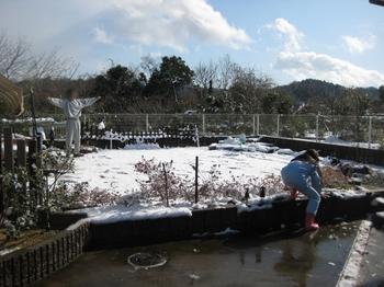 2009 12 19 雪 3.jpeg