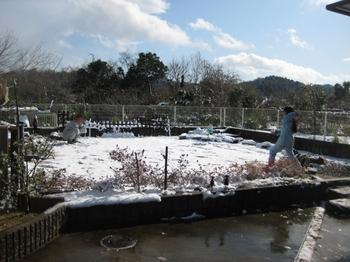 2009 12 19 雪 4.jpeg