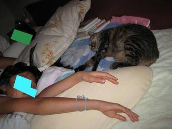 ミャウ 寝る2.jpeg