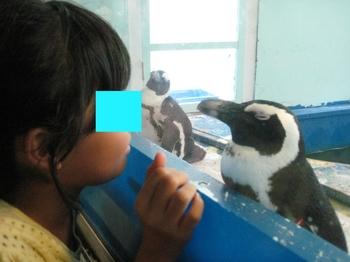 サル子&ペンギン 1.jpeg