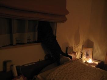 ランプ3.jpeg